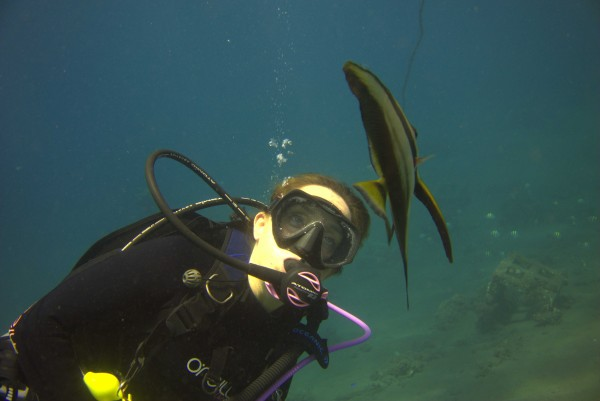 Diving Bali Reef