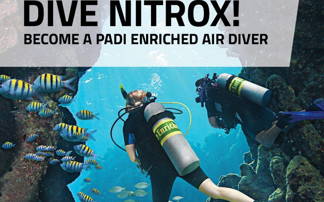 Pourquoi plonger au Nitrox, les conseils de Fab Dive
